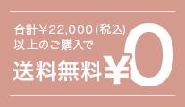 2万円(税抜)以上で送料無料
