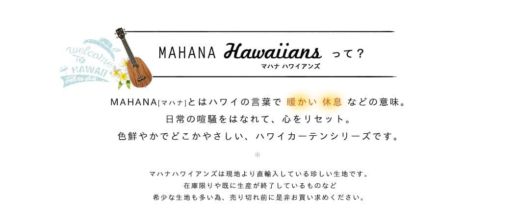 マハナハワイアンズ02