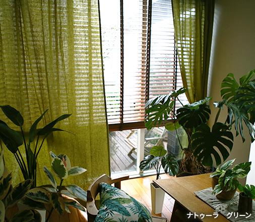 たくさんの植物と暮らす部屋には、光と風を取り入れやすいナチュラルな麻のカーテンでさらに心地よく。陰影の美しいグリーンのカーテンで癒されるインテリアに