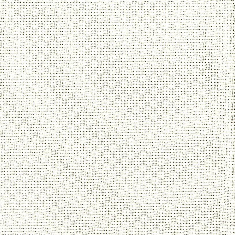 レースカーテン 白(ナチュラルホワイト) スミノエ デザインライフ ムース