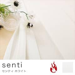 プライバシーレース アンフォルメ 〜センティ〜<防炎機能付>