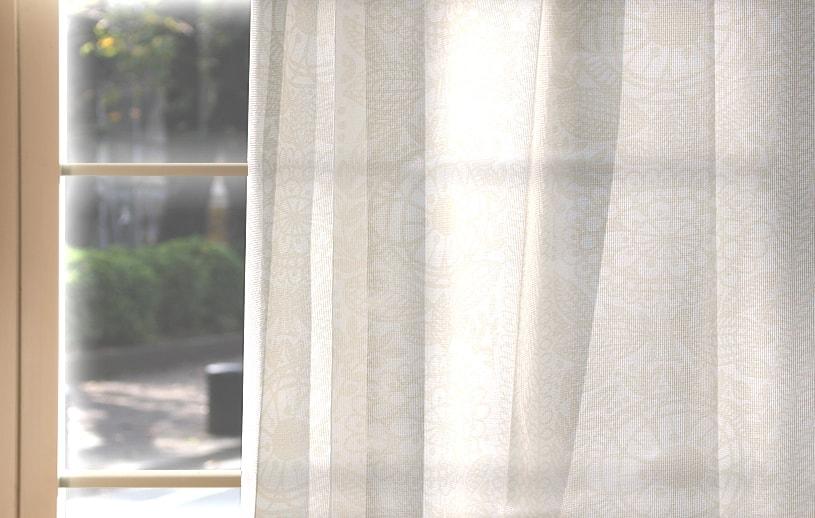 アスワン フィンレイソン 〜タイミレース〜
