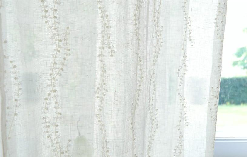 Pianta lace ピアンタレースの商品画像