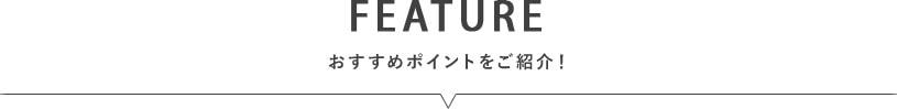 EXマイクロファイバーラグ farge〜ファージ〜