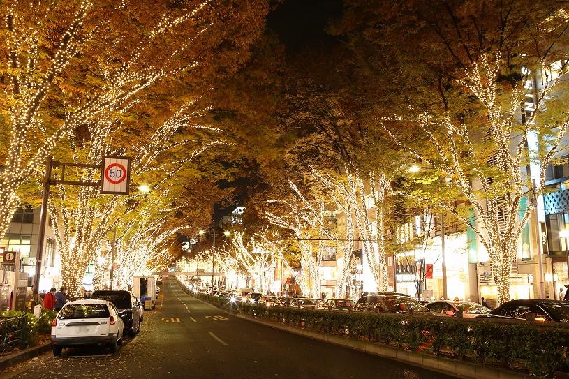 【12月】街は一気にクリスマスムード☆彡 約50万球のLED使用!表参道イルミネーション2016