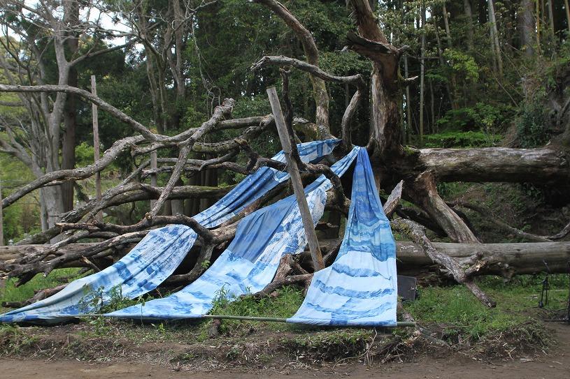 返品カーテンをリサイクル!舞踏「ばけのかわ」に当店のカーテンを使用していただきました!