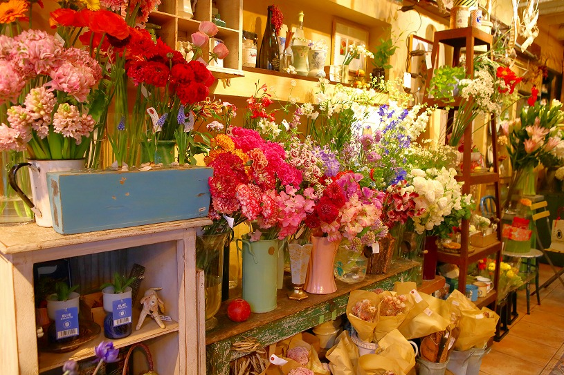 【青山】おススメ!フラワーショップ4選!日々の生活に彩りを・・。隠れたお花の名店をご紹介!