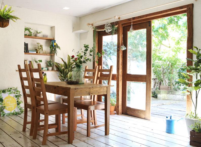 植物とフェイクグリーンお部屋に置くならどちらがいい?メリットとデメリット比べてみました。
